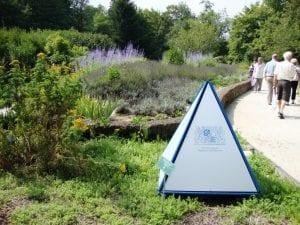 Der Kurpark durch den Kräutergarten