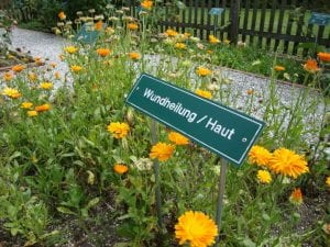 Der Kurpark Kräutergarten
