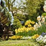 Frühling in Bad Wörishofen - eine wahre Blütenpracht